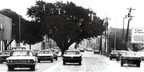 The Oak Tree on Texas Avenue, around the 1970s